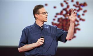 מיקרואורגניזמים וההשפעה שלהם על הגוף שלנו