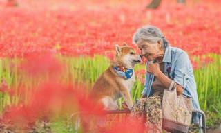 14 תמונות המתעדות קשר חם ואוהב בין סבתא יפנית לכלבה