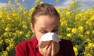 נקודות לחיצה לטיפול בתסמיני אלרגיה