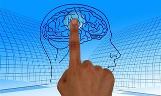 שיטות ועצות טובות לשיפור יכולות הזיכרון, מפי מקצוענים בתחום