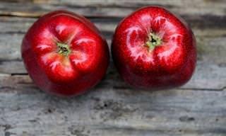 משל התפוח - דרך מיוחדת לגרום לילדים להיות יותר מקבלים וסובלנים