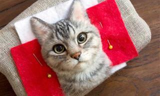האמנית הזו יוצרת העתקים מושלמים של חתולים מבד לבד