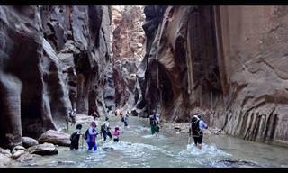 כל היופי של הפארק הלאומי ציון בסרטון באיכות 4K