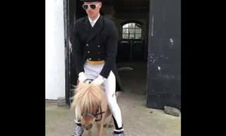 רוכב הסוסים הזה החליט לקחת סוס פוני לרכיבה משעשעת במיוחד