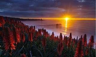 תמונות מעוררות השראה של השמש