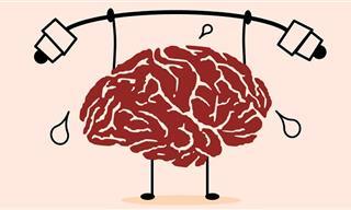 5 אפליקציות שיעזרו לכם לאמן את המוח ולחזק את החשיבה