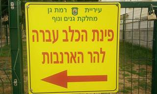 20 שלטים מצחיקים ומוזרים שתמצאו רק בישראל