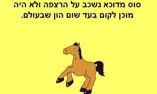 הסוס והפרה!