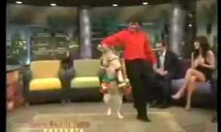 אנה ארונוב - מאחורייך...כלבה רוקדת - גדול!!