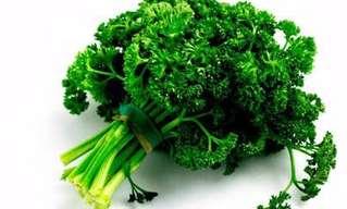 יתרונותיה הבריאותיים של הפטרוזיליה