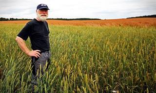 החקלאי, פקיד המס והאידיוט: בדיחה נהדרת שעשתה לי את היום!