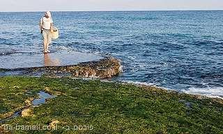5 חופי הרחצה המומלצים ביותר בארץ!