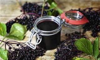 למדו להכין משקה טבעי מסמבוק שחור שיעזור לכם לשמור על הבריאות