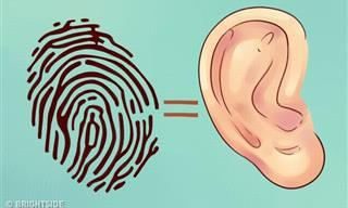 מה האוזניים שלכם יכולות לספר על מצבכם הבריאותי