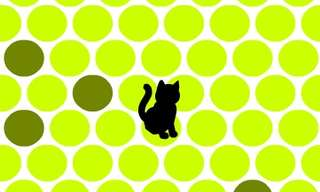 הקיפו את החתול: משחק הגיון