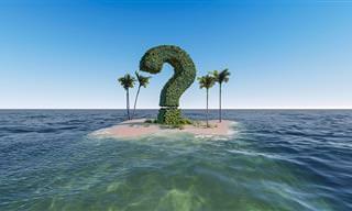 בחן את עצמך: 15 שאלות טריוויה לגאונים בלבד