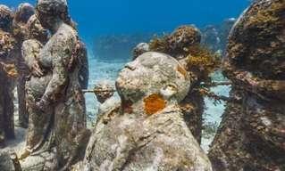 סיור פנורמי באתרים מדהימים מתחת למים