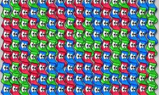 צבעו את הגרביים - משחק מחשבה ממכר