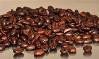טיפים לשמירה על מכונת הקפה שלכם