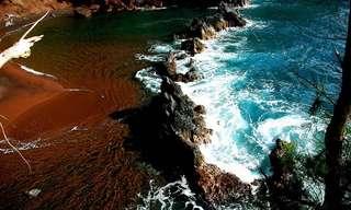חופי ים בכל צבעי הקשת