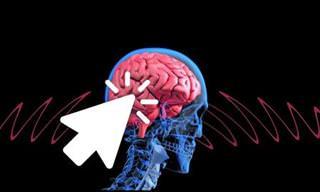 11 תכסיסים שהמוח שלכם עושה כדי לשלוט בדעתכם