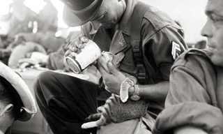 תמונות מרגשות של בעלי חיים וחיילים