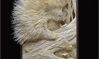 פסלים מנייר - עיצובים נפלאים של קלווין ניקולס