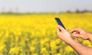 7 אפליקציות שיסייעו בשיפור אורח חייכם