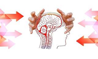 מחקר פורץ דרך מוכיח כי שתל חדשני במוח יכול להשיב ולשפר יכולות זכרון