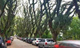 מרחוב אנונימי לאחד המפורסמים בעולם