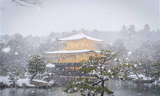 18 תמונות מדהימות של קיוטו בשלג