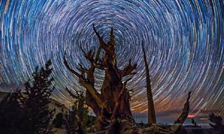 18 תמונות נוף מדהימות על רקע שמי הלילה זרועי הכוכבים