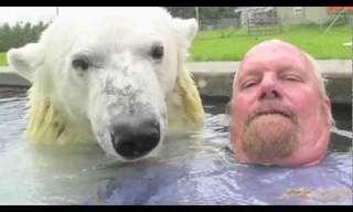 שחייה עם דוב קוטב - מדהים!