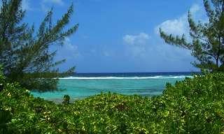 סיור אינטראקטיבי באיים הקריביים