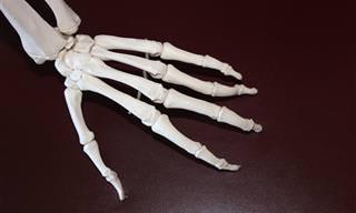 """טיפול חדשני בדלקת מפרקים שיגרונית עם """"ננו-ספוגים"""""""