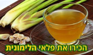 יתרונותיו של עשב הלימון ו-3 מתכונים טעימים ובריאים שתוכלו להכין באמצעותו
