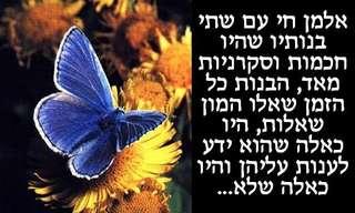 הפרפר הכחול - הכל ביידים שלך!