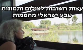 עצות צילום ותמונות מדהימות מישראל של צלמת הטבע סוזן יוסף