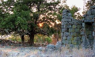 אוסף הסרטונים הזה ייקח אתכם ל-11 שמורות טבע מדהימות בישראל