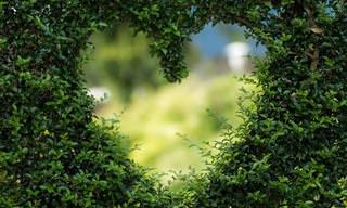 פינה קטנה בלב - ברכה נפלאה ממישהו שאוהב אותך