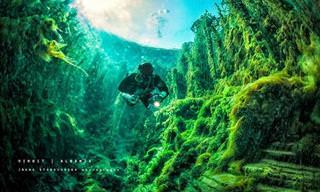 מסע מופלא אל המערות התת-ימיות של אלבניה