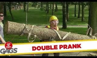 בול עץ - קומדיית טעויות מצחיקה