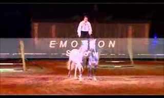 האיש והסוסים - מופע מדהים!