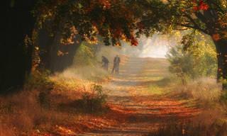 תמונות מדהימות של הסתיו הצבעוני בהרי הסודטים בפולין