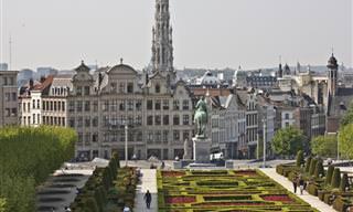 מה יש לעשות בכל אחד מ-11 המחוזות של בלגיה