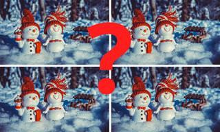 בחן את עצמך: מבחן מצא את ההבדלים בגרסה מיוחדת לחורף