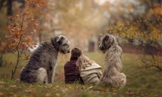20 תמונות מתוקות של ילדים משחקים עם כלבים