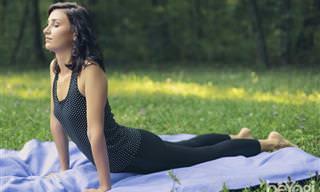 10 תרגילי יוגה פשוטים לשמירה על בריאות שרירי המותניים