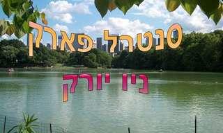 הפארק המפורסם בעולם: סנטרל פארק