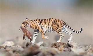15 תמונות של חיות נייר קטנות ומקסימות יגרמו לכם לחייך